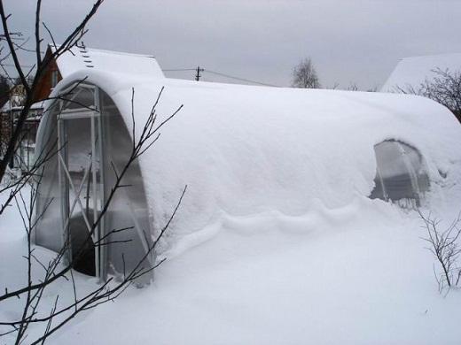 Сибирская теплица из поликарбоната на фото