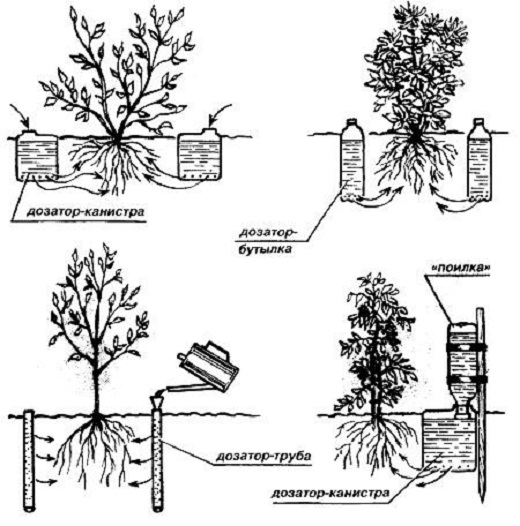 На рисунке схема с примерами устройства альтернативных систем капельного полива