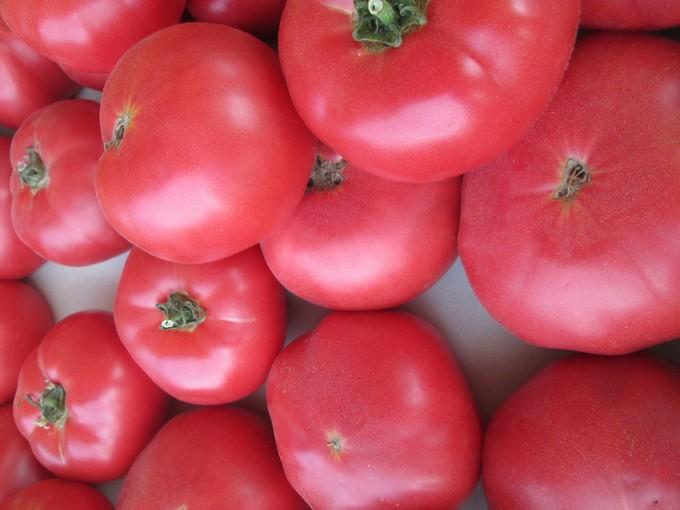 pomidory-dlya-teplicy-sorta-6