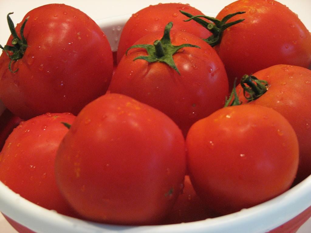 vyrashchivanie-pomidorov-v-teplice_00003