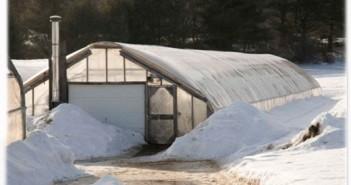 На фото зимняя теплица с отоплением