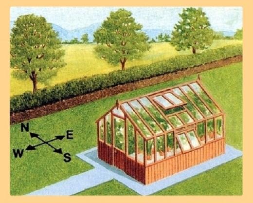 На рисунке пример установки теплицы с учетом ориентации на стороны света